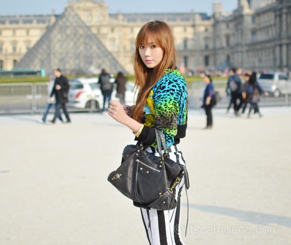 Bienvenue à Paris (7)