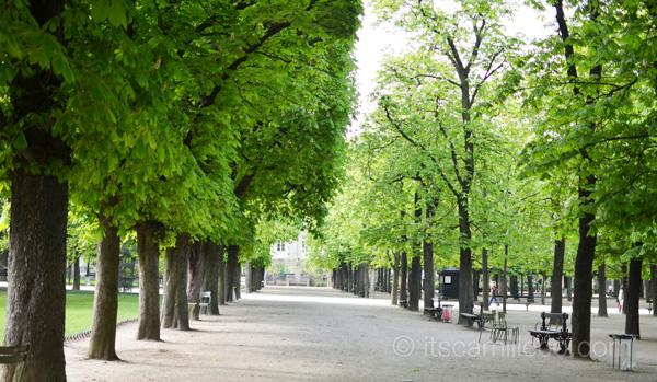 Jardin Du Luxembourg (2)