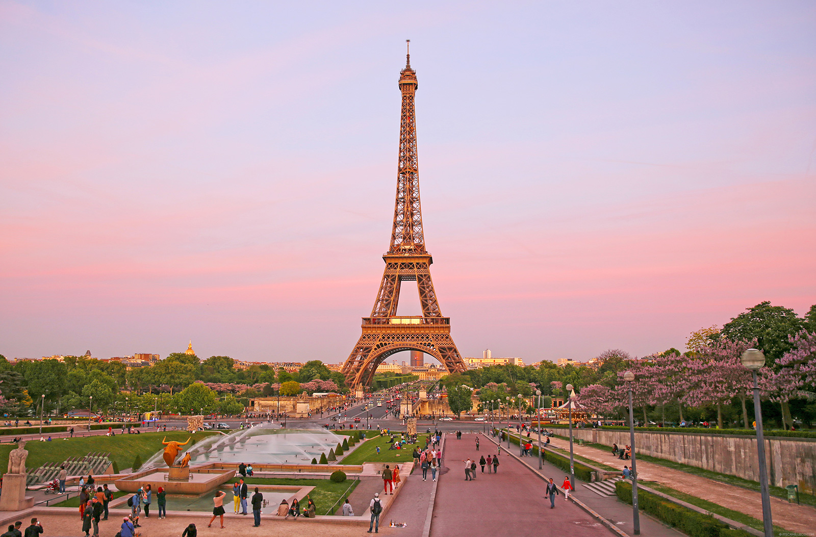 Eiffel Tower, Paris - www.itscamilleco.com